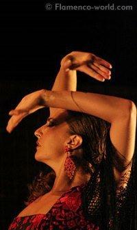 Flamenco-Show aus Andalusien