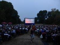 29. SommerNachtFilmFestival