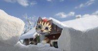 Petterson & Findus - Das schönste Weihnachten überhaupt