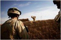 Vom Lachen und vom Sterben - Christoph Bangert.Fotografien vom Krieg