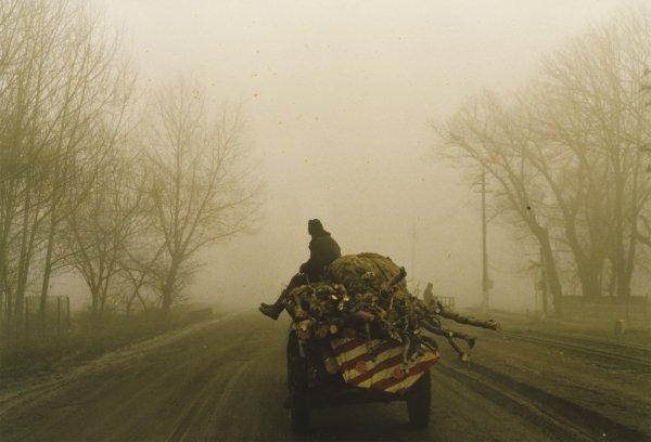 Die papierene Brücke - © Ruth Beckermann Filmproduktion