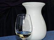 Weinhorizonte – ein Blick zurück