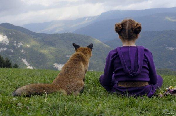 Der Fuchs und das Mädchen - © STUDIOCANAL GmbH