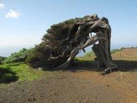 Reisefieber: El Hierro - Die kleinste der Kanarischen Inseln