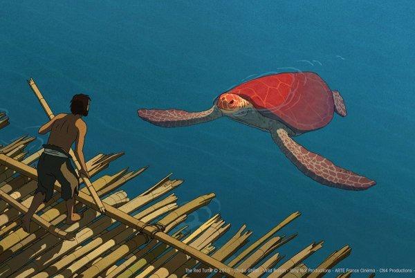 Die rote Schildkröte - © Universum Film