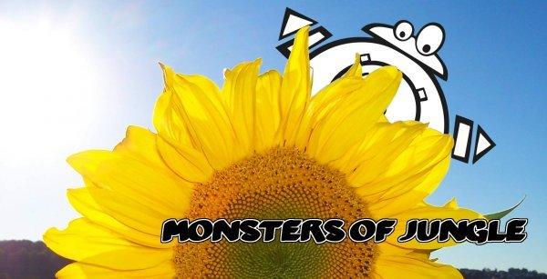 Monsters of Jungle - Sommer Spezial - © Veranstalter