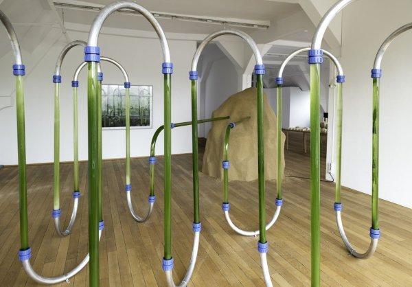 Art meets public 1 - © Algenreaktor, kybernetisches Modell, © Stefanie Zoche, VG Bild-Kunst, Bonn, 2017