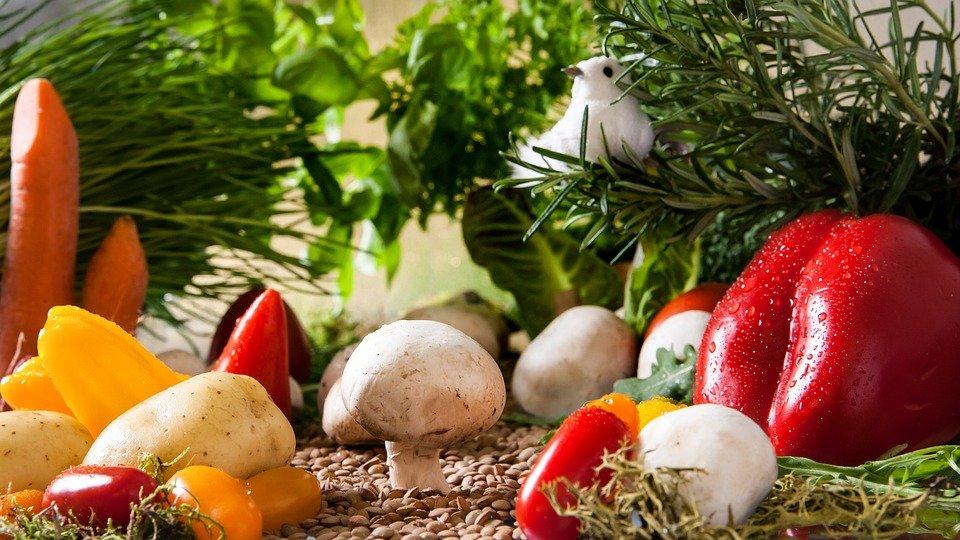 Leckere Gerichte mit frischen Kräutern - © www.pixabay.de