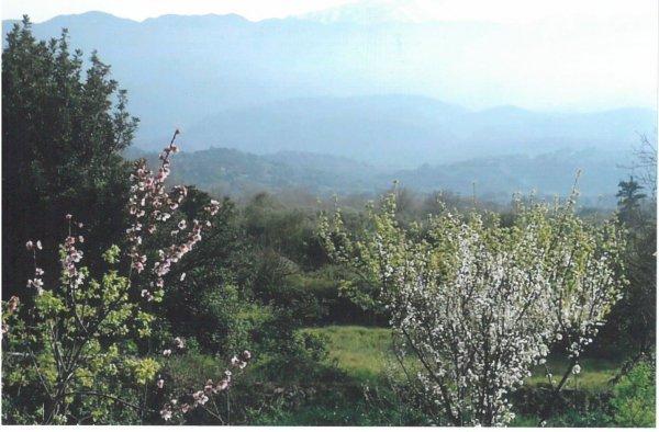 Frühling auf Kreta – Küsten, Schluchten und Paläste - © Veranstalter