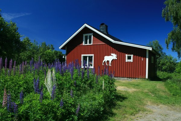 Finnland und Schweden - nicht nur Wald und Wasser Teil 2 - © Veranstalter